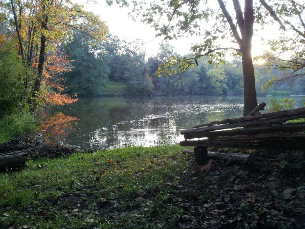 cropped-Lake-in-Fall-12-by-Falls.jpg